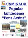 "8a Caminada popular  ""Peus actius"" - Linfelleida"