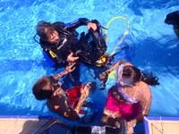 'Artquatic', una exposició fotogràfica subaquàtica a la Piscina Municipal de Pardinyes