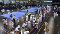 Campionat Provincial de Taekwondo Infantil i adult