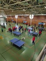 Federació Acell - XIX Campionat territorial de tennis taula i bàdminton
