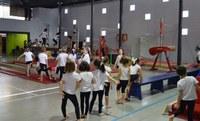 El Servei d'Esports de la Paeria obre la inscripció a les escoles municipals per aprendre i millorar la pràctica esportiva