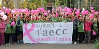 Lleida es mobilitza contra el càncer de mama