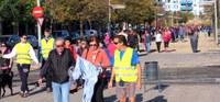 Unes 300 persones caminen a Lleida per la diabetis